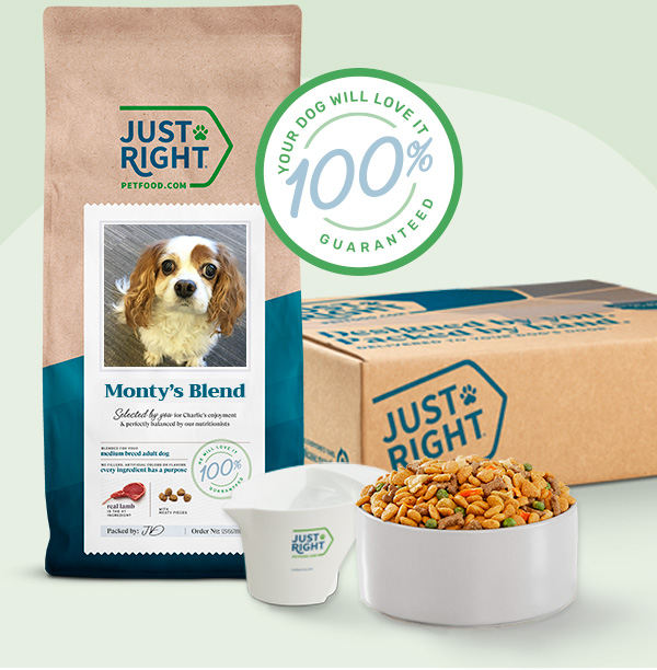 A Just Right box, bowl of food and measuring scoop next bag of dog food with the name and photo of a white dog on it. A white and green badge with the words 'Your dog will love it 100% guaranteed'.